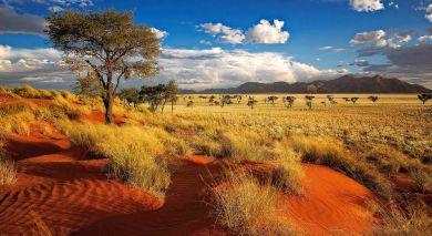 Empfohlene Individualreise, Rundreise: Kapstadt und Klassisches Namibia