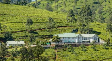 Example private tour: Enchanting Sands and Tea Trails of Sri Lanka