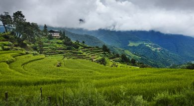 Example private tour: Luxury Bhutan & Thailand Paradise Islands