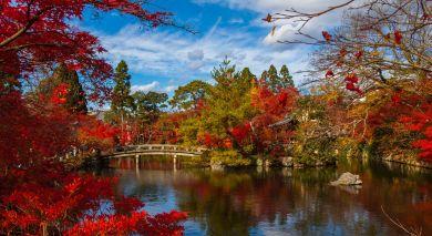 Empfohlene Individualreise, Rundreise: Japan für Einsteiger