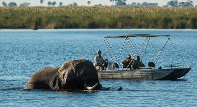 Empfohlene Individualreise, Rundreise: Safari Höhepunkte: Tansania, Simbabwe und Botswana