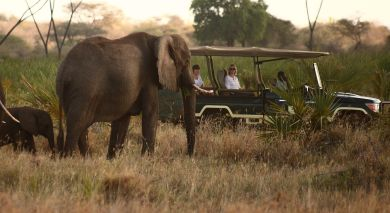 Example private tour: Kenya Off the Beaten Track