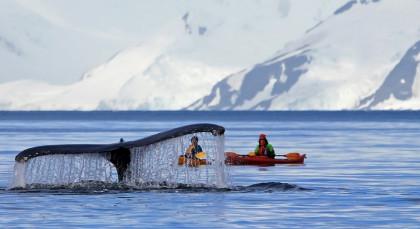 Antarktis in Antarktis