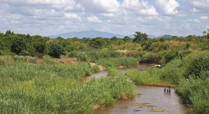 Destination Liwonde National Park in Malawi