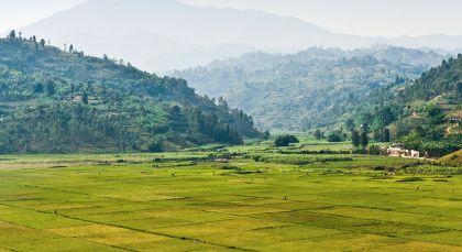Destination Kigali in Rwanda