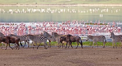 Reiseziel Lake Manyara & Ngorongoro Krater in Tansania