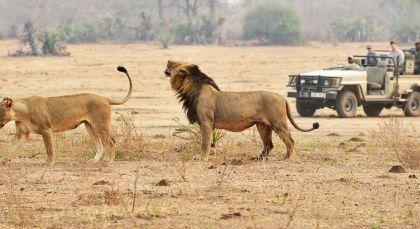 Reiseziel Kafue in Sambia