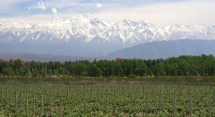 Mendoza in Argentinien