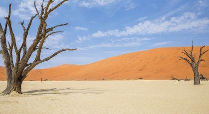 Eastern Caprivi in Namibia