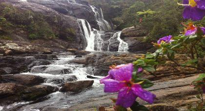 Destination Nuwara Eliya in Sri Lanka
