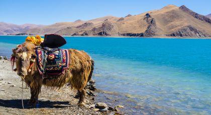 Tibet Reisen in Asien