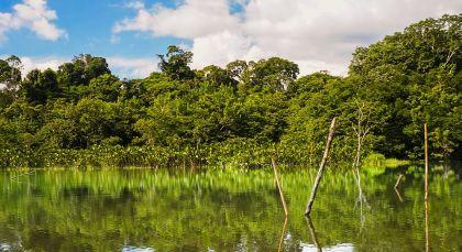 Yasuni in Ecuador/Galapagos