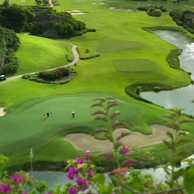 Green Monkey Golf Course