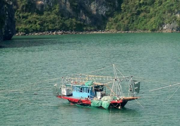 Local Boat on Halong Bay