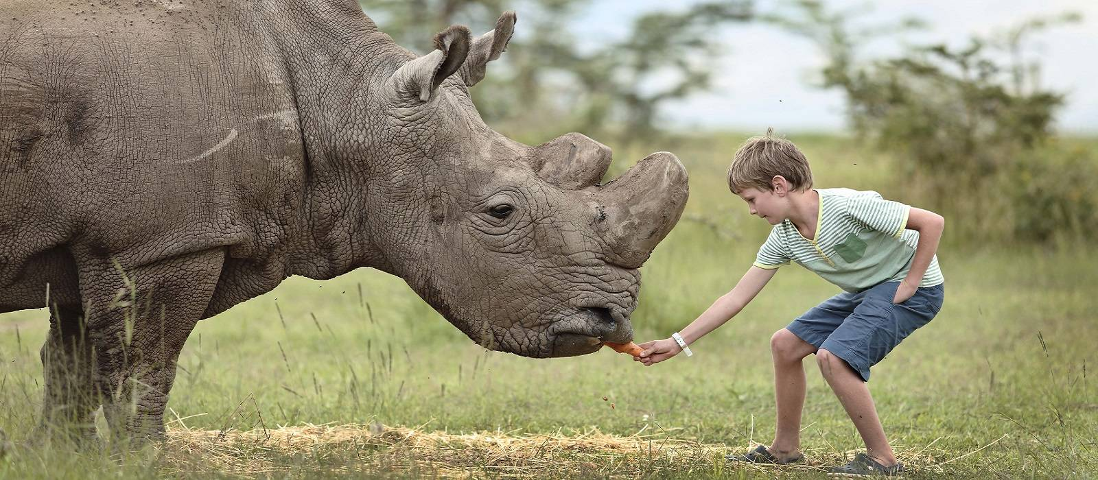 Enchanting Travels Africa Tours -interacting-with-rhino in Kenya