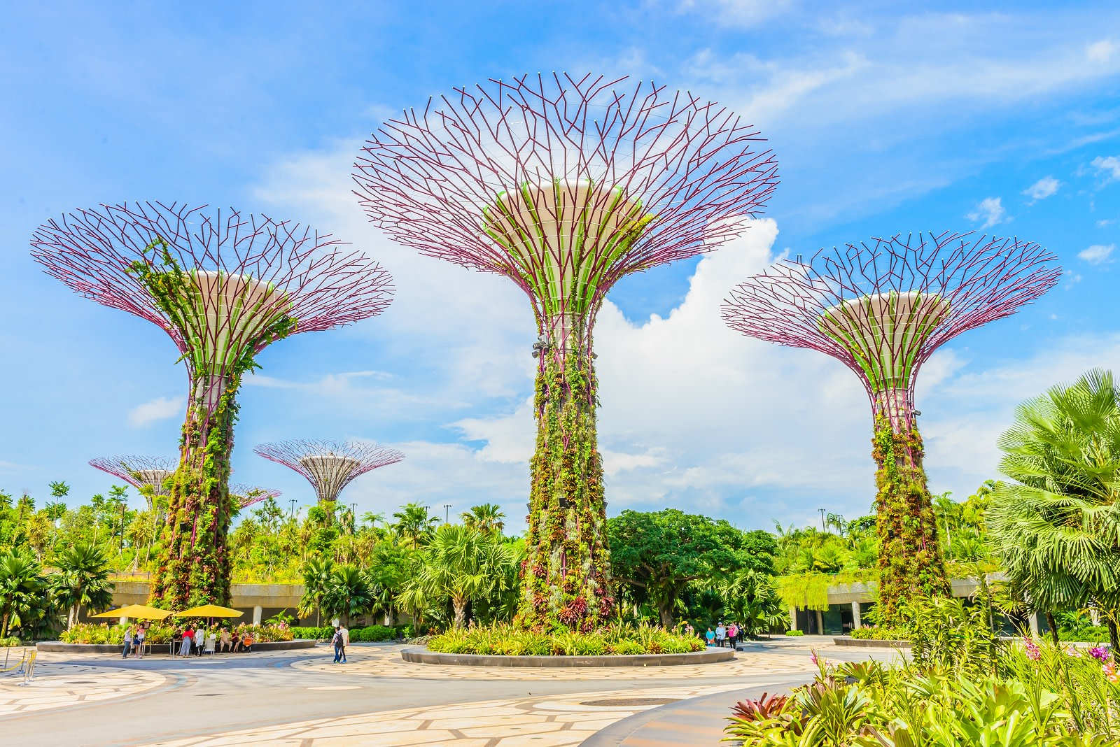 Enchanting Travels Asia Tours Singapore TourismGarden by the bay at singapore