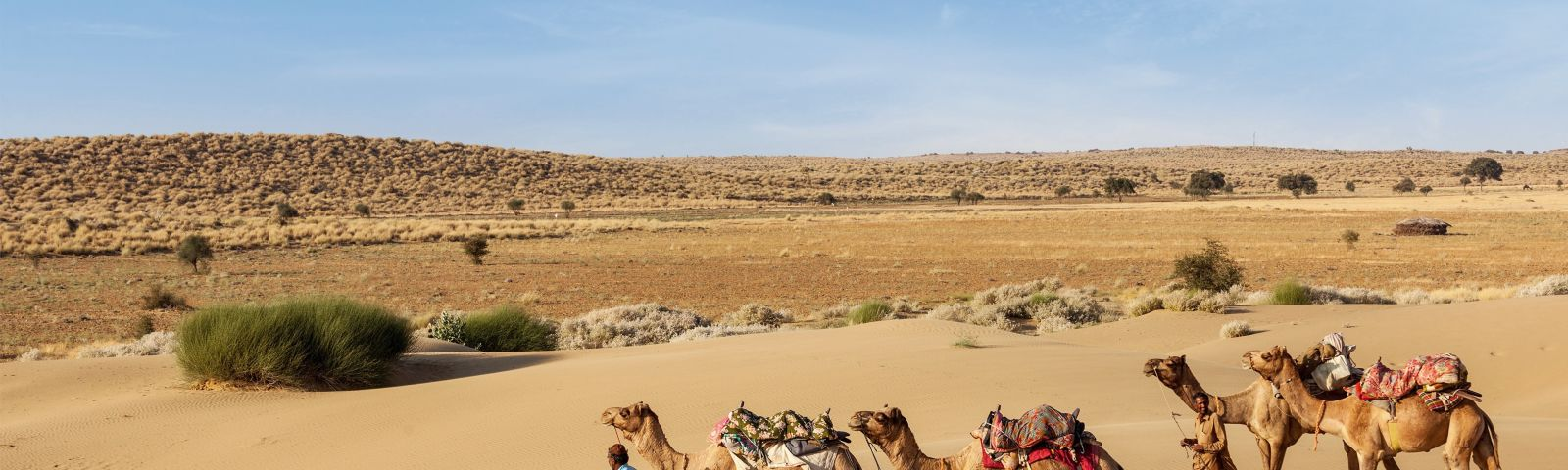See Sensational Miles Of Nothingness In Jaisalmer - Perfect for winter travel