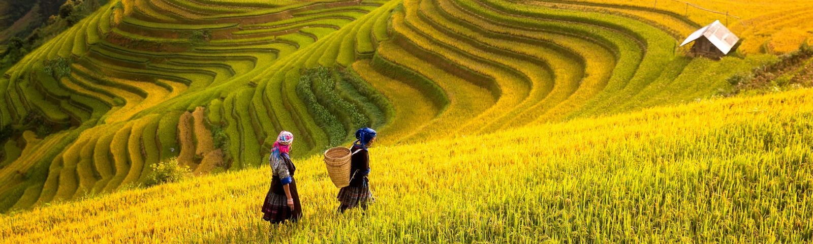 Sapa - Vietnam destinations