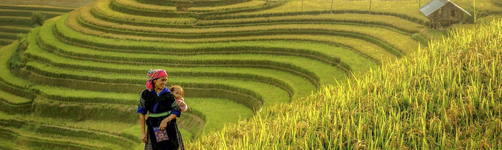Mutter mit Baby auf dem Arm steht zwischen den grünen Reisterrassen von Mu Cang in Vietnam