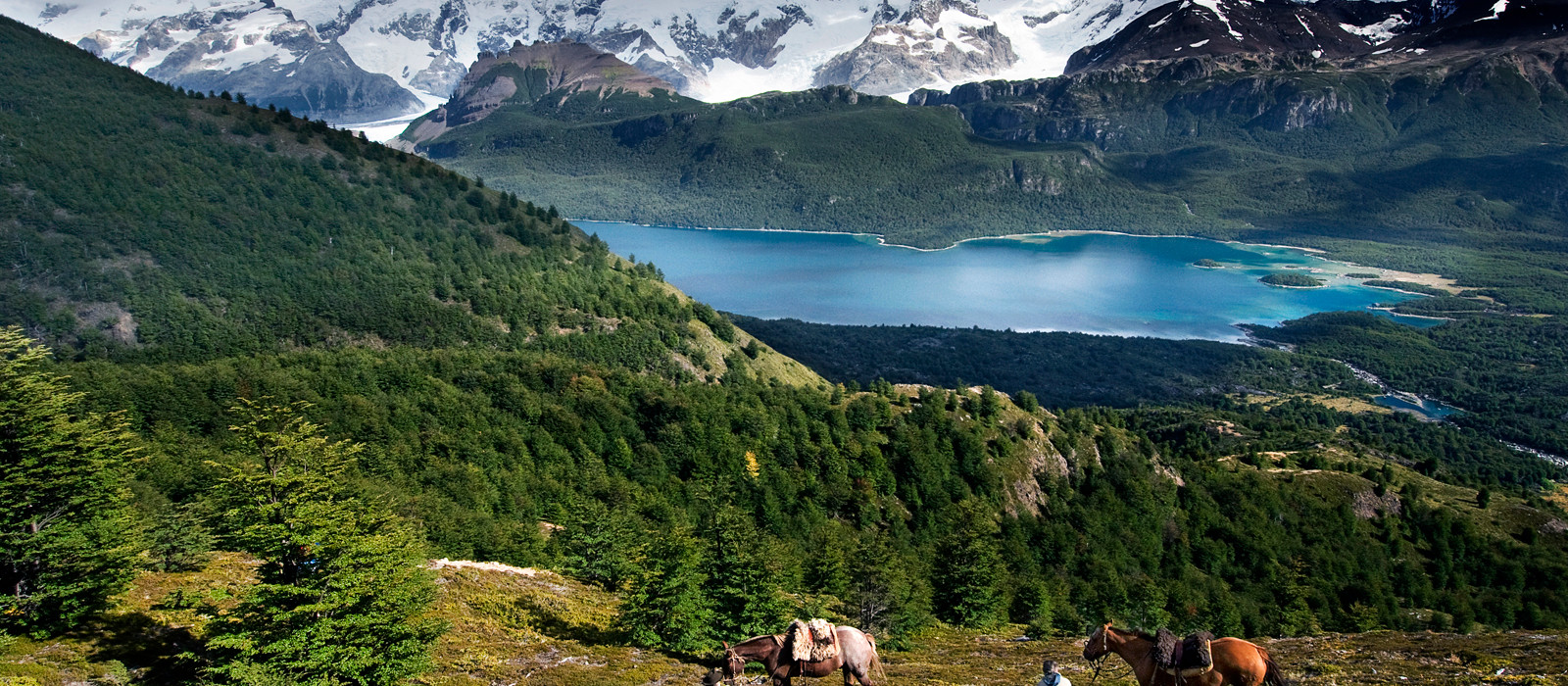 Berglandschaft mit Pferden im Vordergrund vor einem See in Patagonien, Argentinien