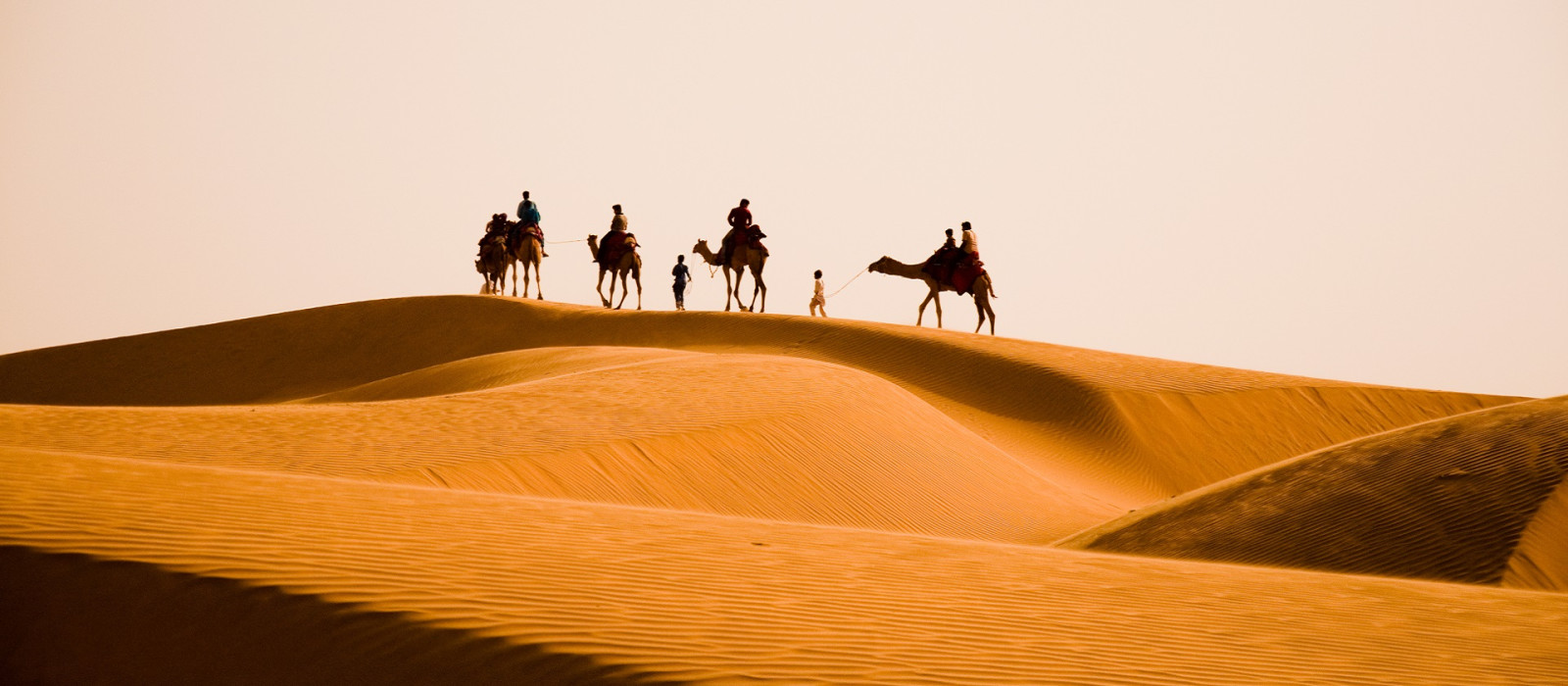 North India travel guide - Camel safari tour in Rajasthan, India.