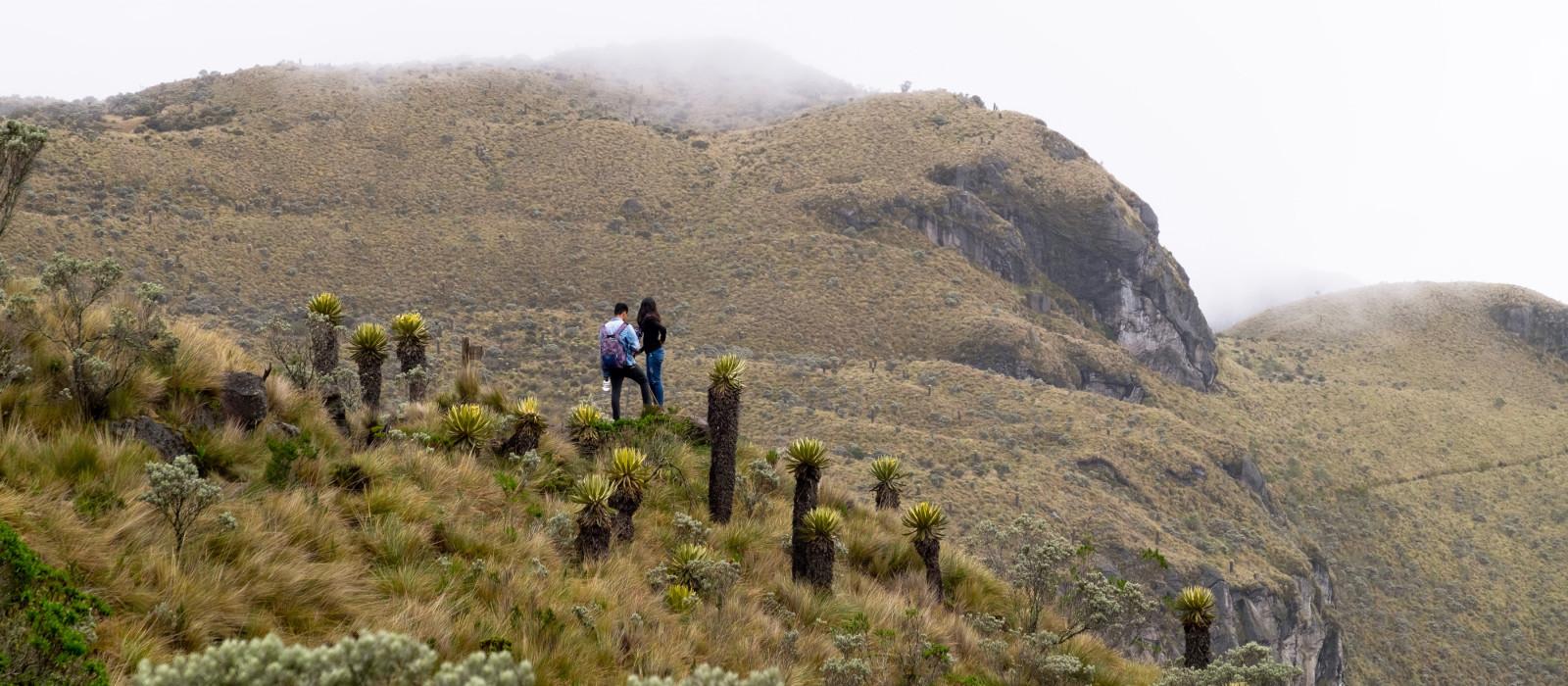 Menschen beim Wandern im Los Nevados National Natural Park, Kolumbien, Südamerika