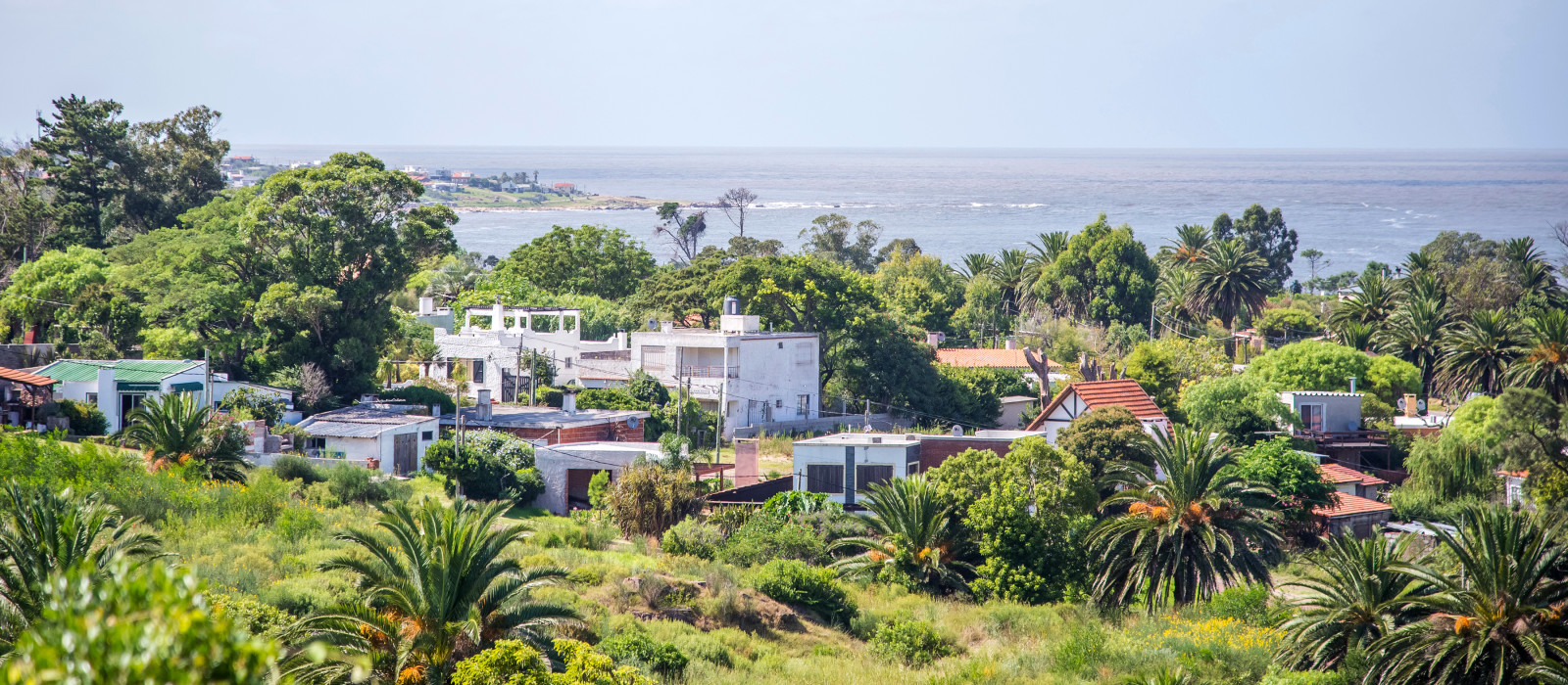 Vereinzelte Häuser inmitten von Palmen und Büschen am Ufer in Uruguay