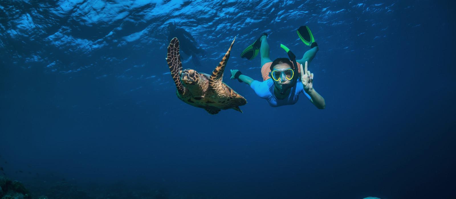 Eine Frau und eine Schildkröte unter Wasser, Seychellen, Afrika