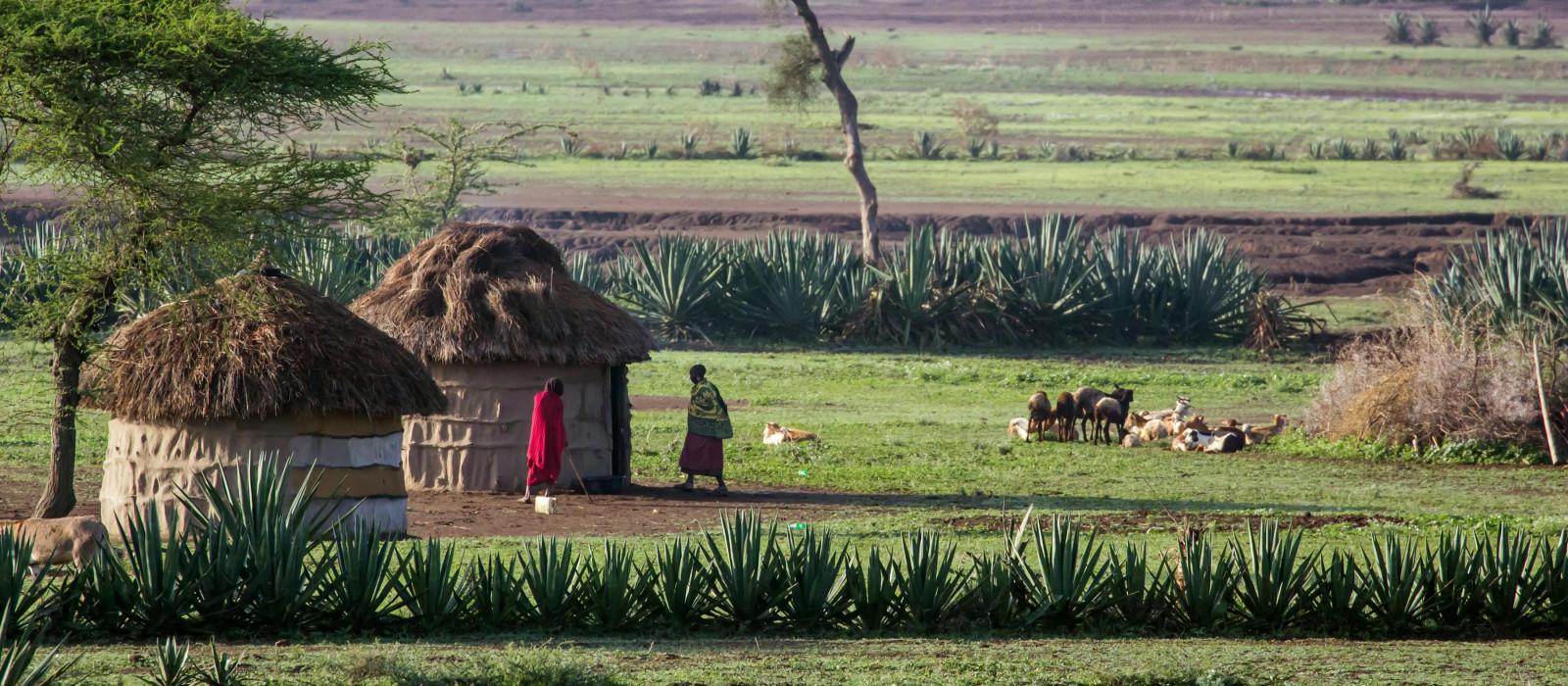 African hut in Tanzania