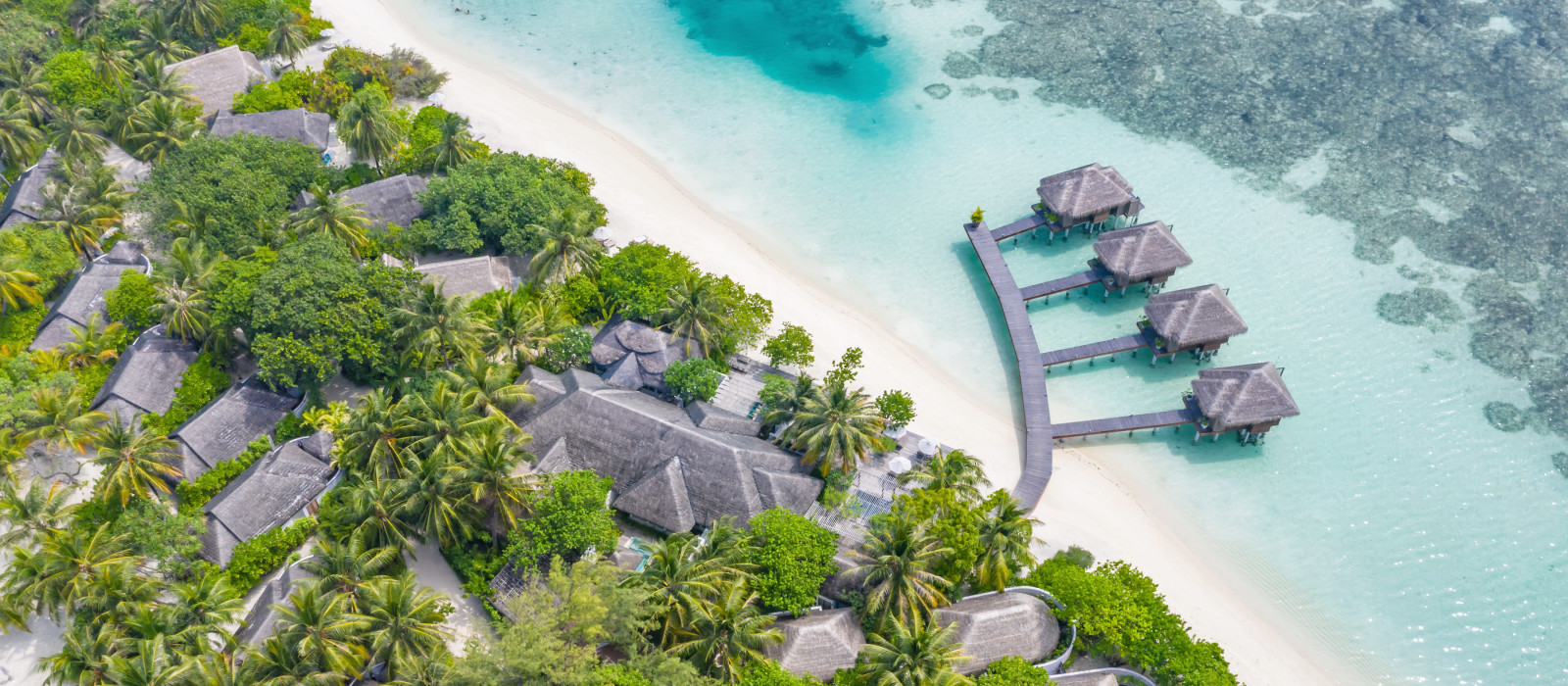 Aerial view of beautiful white sand beach, palm trees and villas, bungalows luxury beach scene of Maldives island