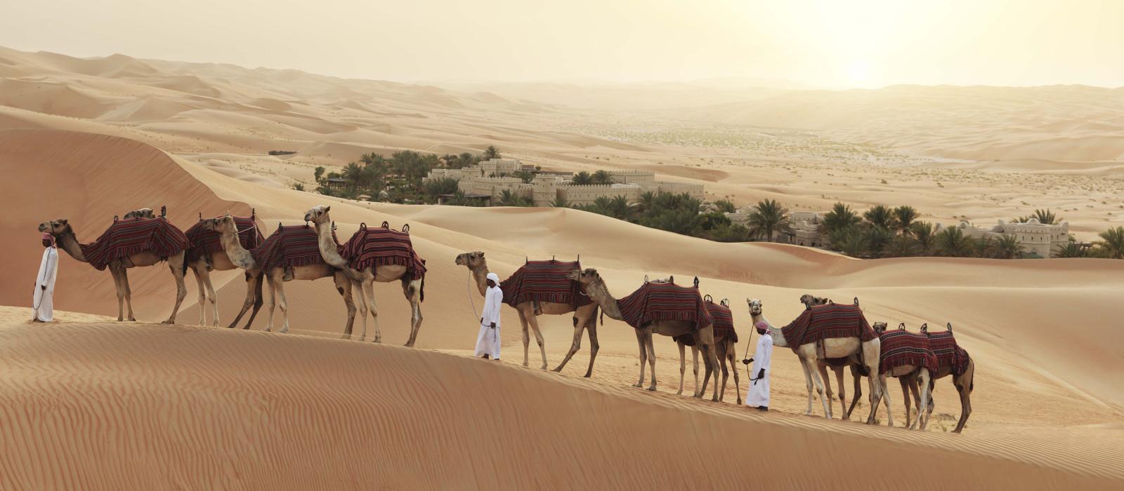 orient Reisen - Kameltrekking in der Wüste von Abu Dhabi