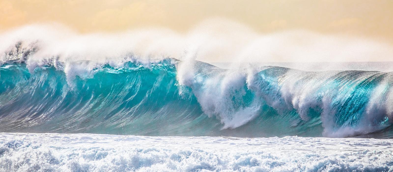 Hawaii Tour - Surf