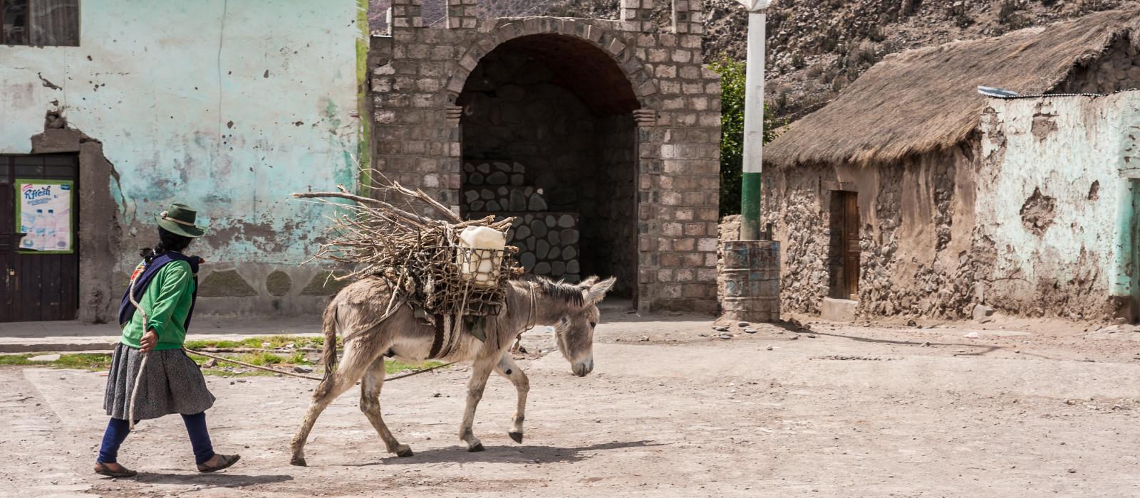 Frau führt ihren Esel mit Rückenladung am Platz von Andagua im Vulkantal, Arequipa, Peru
