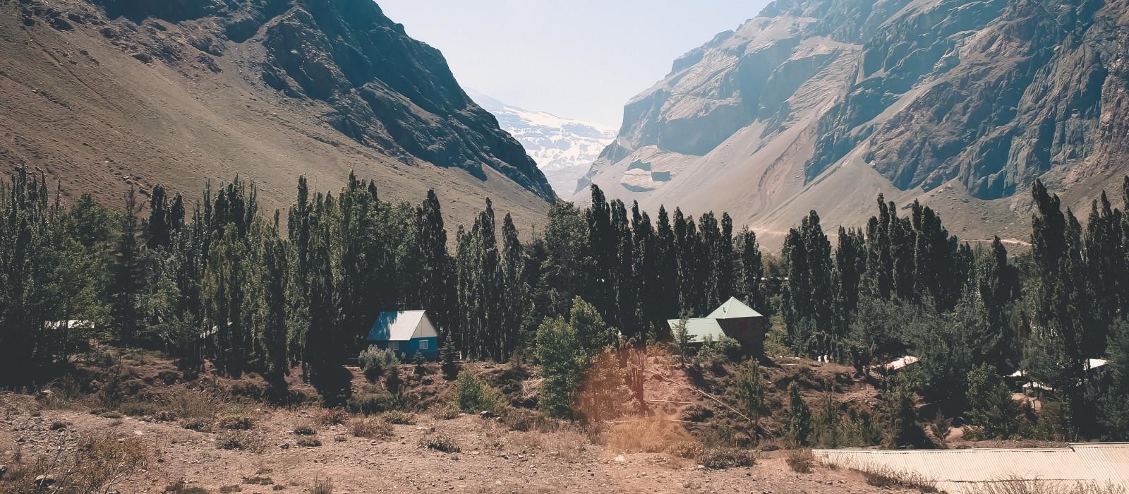 Anden bei Cajón del Maipo, in Santiago, Chile, Südamerika.