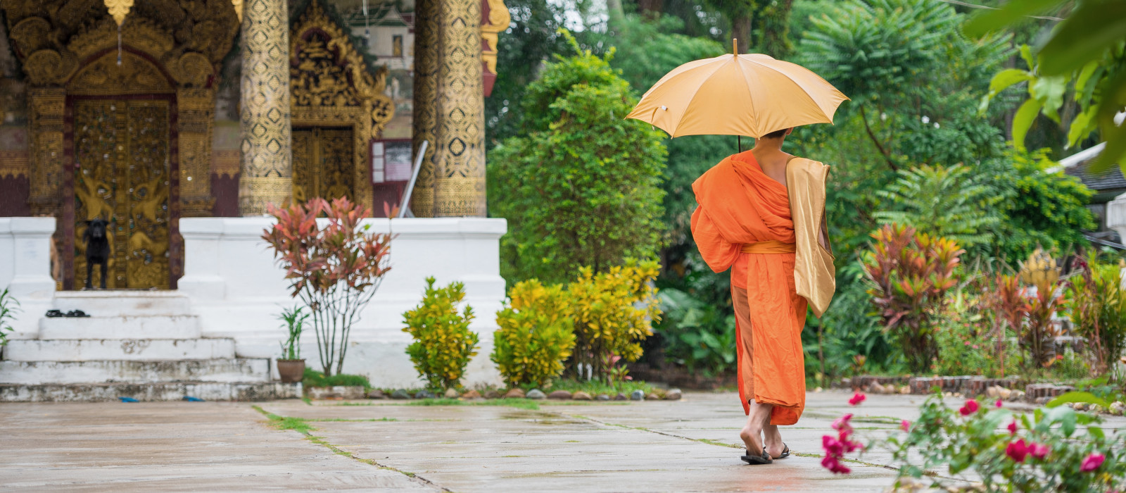 Monk with an umbrella on a city street, Louangphabang, Laos, Asia