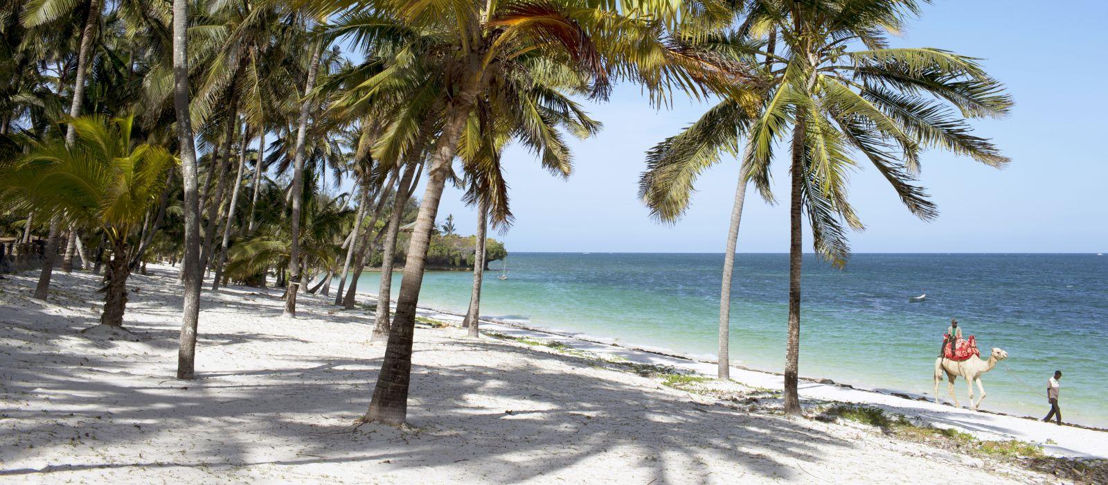 Schöner Strand mit Palmen in Kenia, Afrika