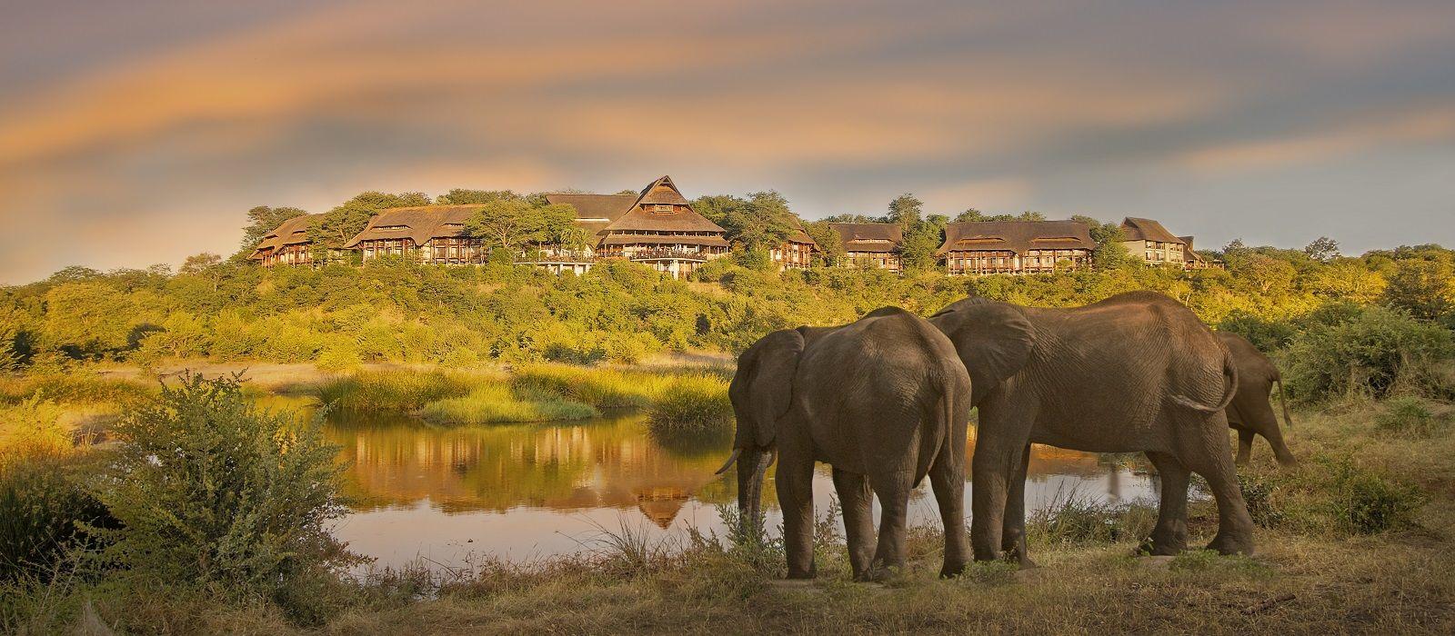 Enchanting Travels Zimbabwe Tours Victoria Falls Safari Lodge Elephants in front of Victoria Falls Safari Lodge