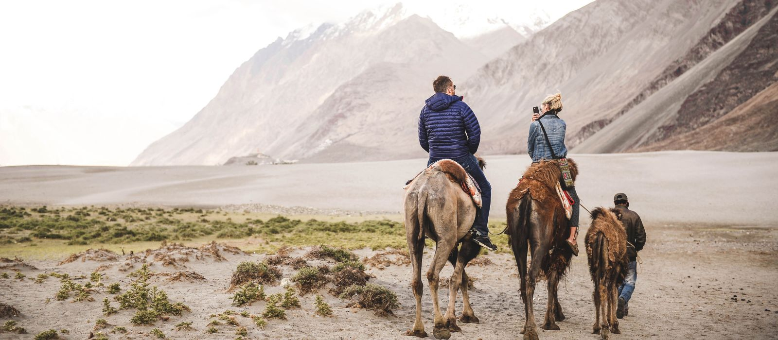 Is India safe? Camel riding in Nubra Valley, Ladakh, India