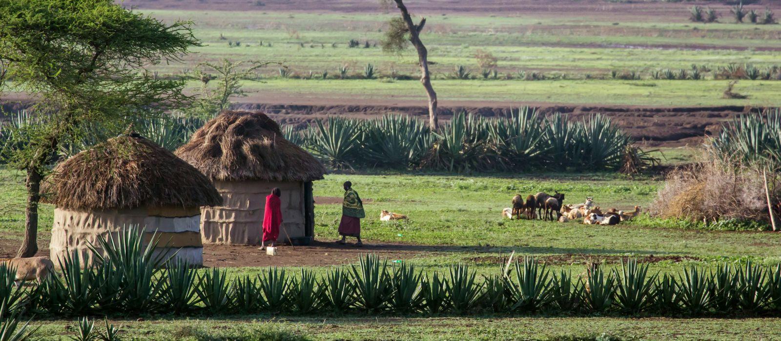 Afrikanische Hütte in Tansania