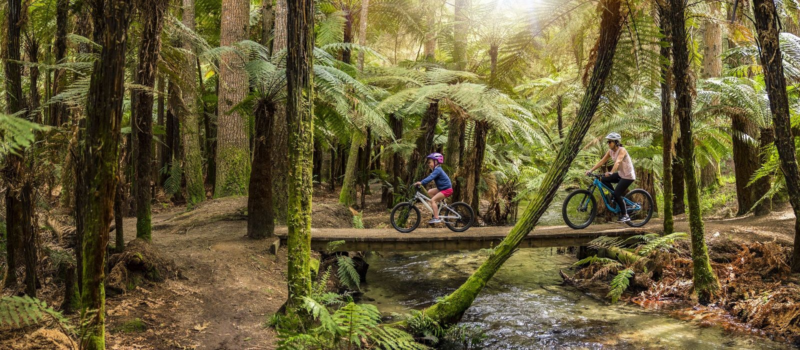 Enchanting Travels New Zealand Tours Rotorua Whakarewarewa-Forest