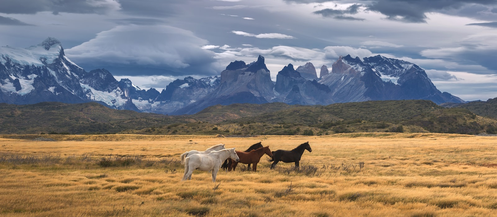 Enchanting Travels Torres del Paine National Park, Patagonia, Chile