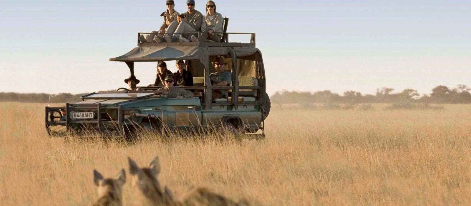 Private Safari in Afrika