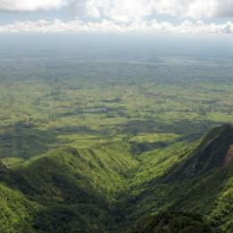 Grüne Bergwelt des Zomba Plateaus