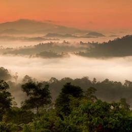 Asia Danum Valley, Sabah, Borneo, Malaysia Enchanting Travels