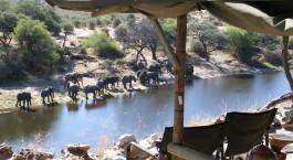 Eine Elefantenherde beobachten im Meno a Kwena Tented Camp in Kalahari Salt Pans, Botswana