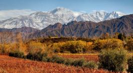 Landscape view at Entre Cielos in Mendoza, Argentina
