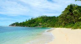 Eine der schönsten Seychellen Inseln: Bird Island