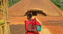 Enchanting Travels - Uganda Tours