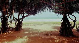 Enchanting Travels - Sri Lanka Tours - Lotus Villa Ayurveda Retreat - Beach