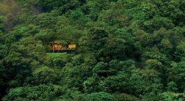 Tree House, Vythiri Resort, Wayanad, Kerala, South India